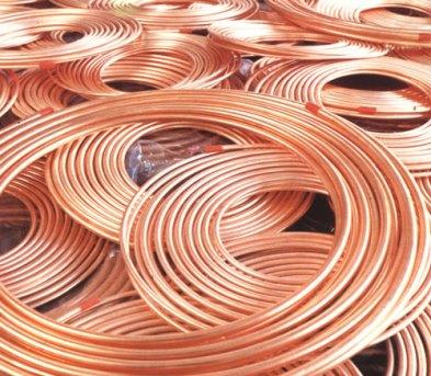 Copper_Beans